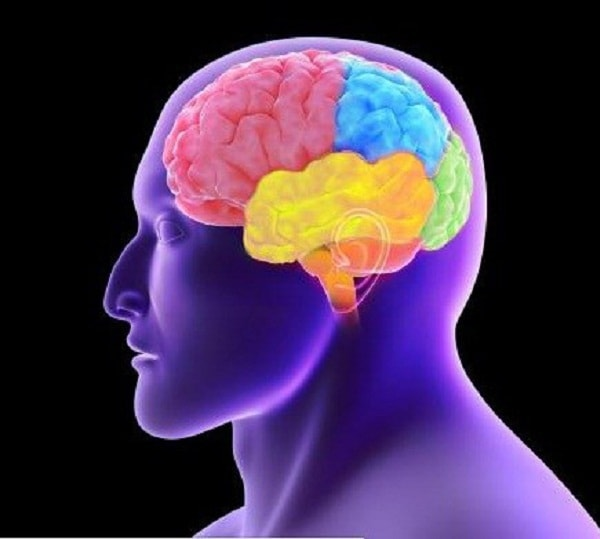 Bạn biết gì về bệnh sa sút trí tuệ trán - thái dương? 1
