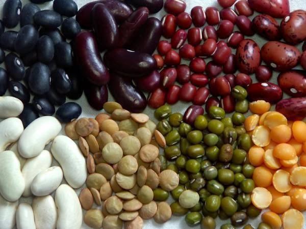 Danh sách thực phẩm giàu protein dành cho người ăn kiêng 1
