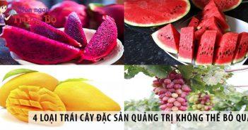 4 loại trái cây đặc sản Quảng Trị không thể bỏ qua
