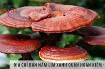 Địa chỉ bán nấm lim xanh quận Hoàn Kiếm - Hà Nội uy tín