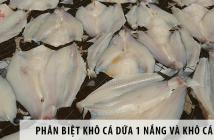 Phân biệt khô cá dứa 1 nắng và khô cá tra đơn giản nhất